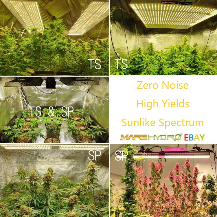 Feature of Mars Hydro TS & SP Series White LED Grow Light