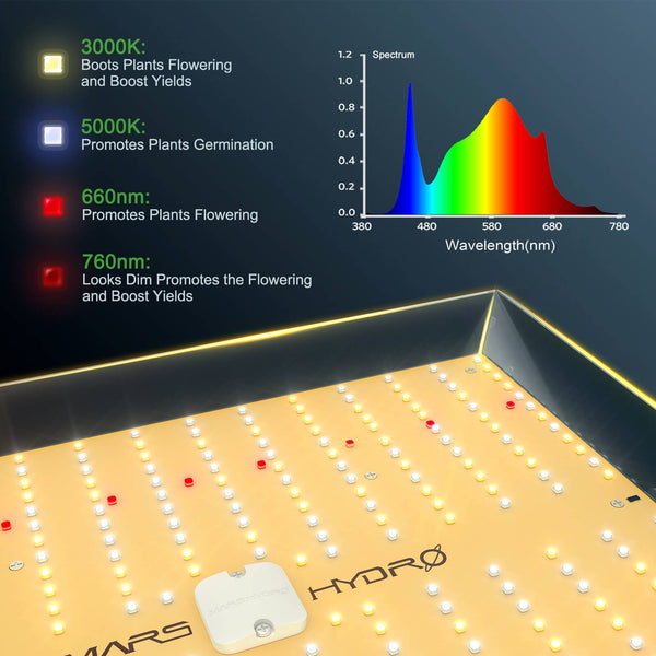 "Mars Hydro TSW 2000W LED Grow Light+48""x48""x80"" Indoor grow Tent Carbon Filter Complete Grow Kits( Preorder for USA  buyers)"