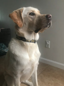 Youth Navy Hooded Tee