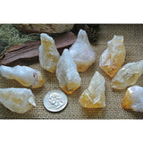 Small Brazilian Citrine Points Healing Stones