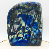 High Grade Blue Flash Labradorite Polished Standing Freeform