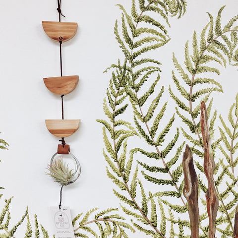 Air Plant Hanger Reclaimed Wood