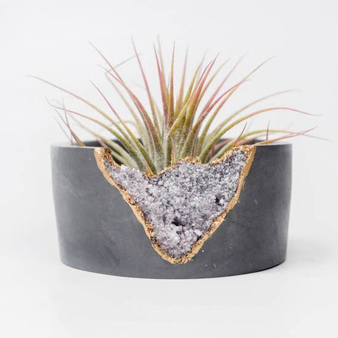 Lepidolite Mini Planter-Dark