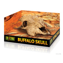 Load image into Gallery viewer, EXO TERRA Buffalo Skull