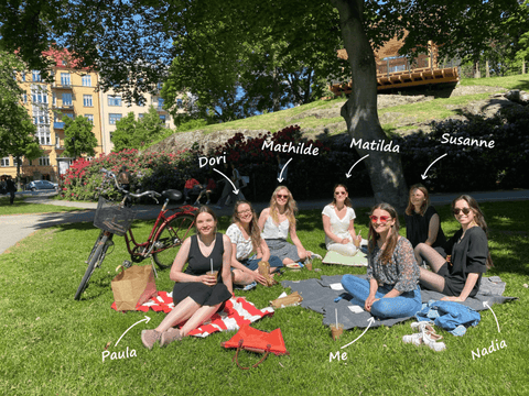 imagiLabs team sitting in a park for a picnic.