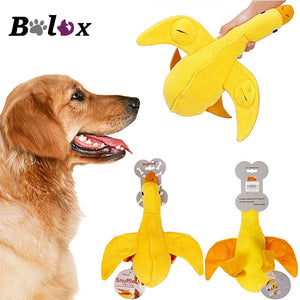 Duck Feeder Chew Toy