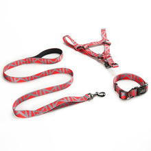 Load image into Gallery viewer, 3pcs Printed Nylon Harness, Collar & Leash Set  - Small to Large Dogs