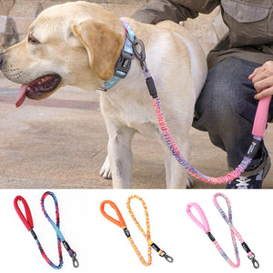 HOOPET Printed Nylon Rope Leash