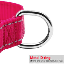 Load image into Gallery viewer, Colored Reflective Nylon Collar and Leash Set