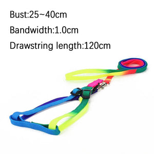 Adjustable Rainbow Soft Nylon Collar Harness & Leash