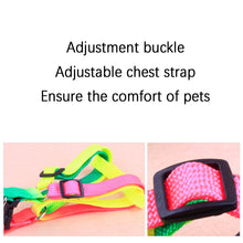 Load image into Gallery viewer, Adjustable Rainbow Soft Nylon Collar Harness & Leash