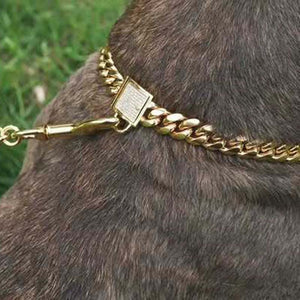 Wide Chain Stainless Steel Dog Collar - gold/silver