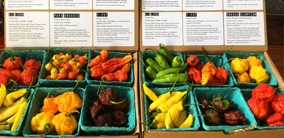 heirloom pepper boxes