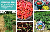 2020 Chili Pepper CSA: Gift Subscription Box with Hot Sauce 3-pack and Card