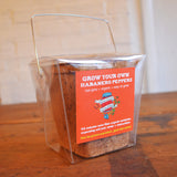 Habanero Pepper Grow Kit