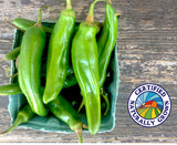 Fresh Hatch Chile Peppers
