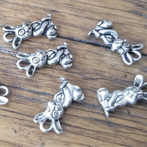 Rabbit Charms