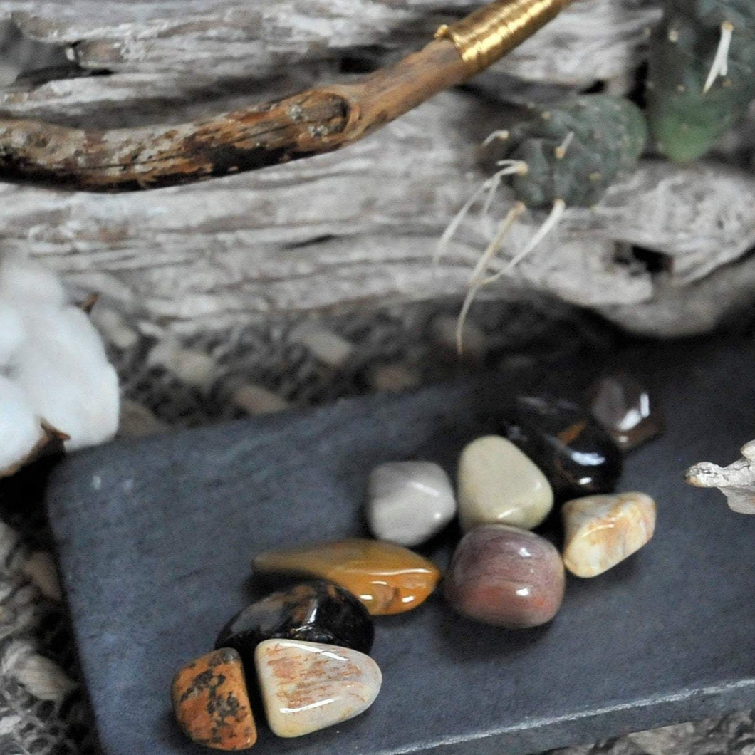 Petrified Wood - Grounding, Strength and Support