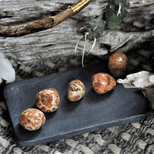 Leopard Skin Jasper - Strength and Vitality