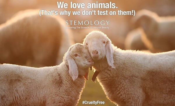 We Love Animals #CrueltyFree