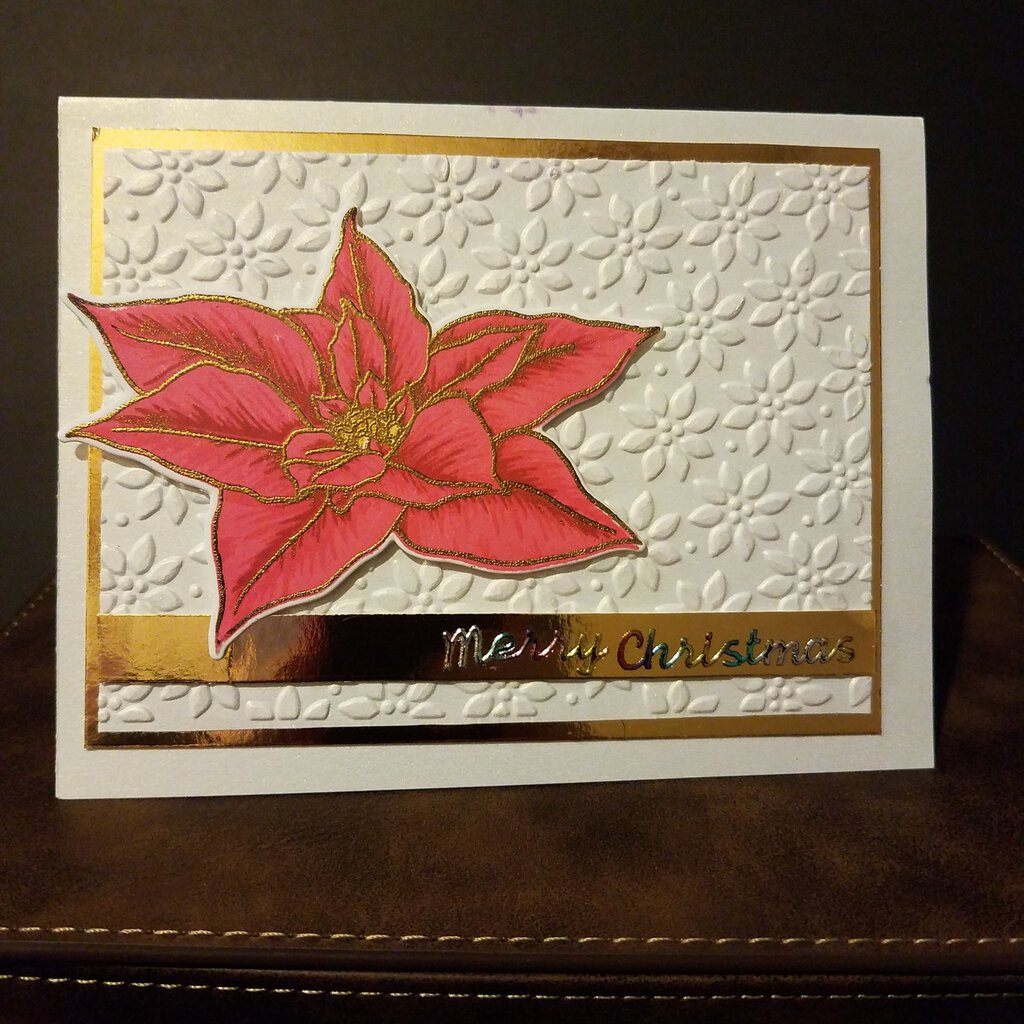 White Embossed Merry Christmas with Poinsettia Card Blank Inside with Envelope