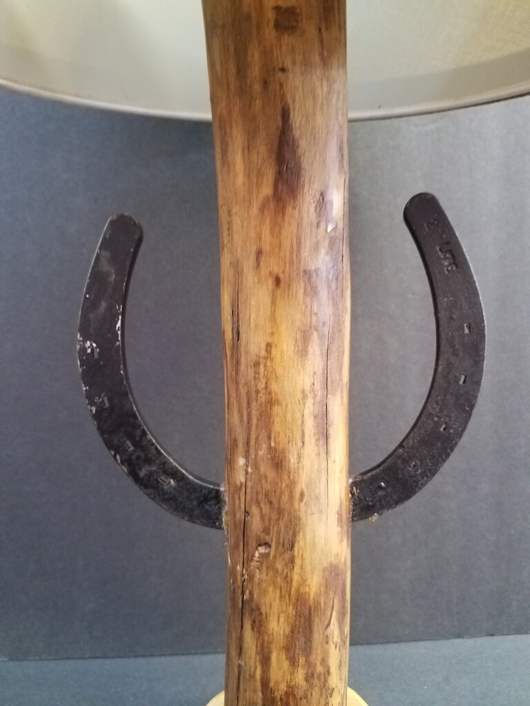 "Hand Crafted Rustic ""Root"" Standing Lamp"
