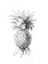 Load image into Gallery viewer, ananas fruit woodcarving 1800s old-book siebdruck screen-print handdruck botanic vintage