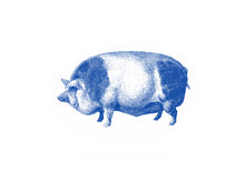Load image into Gallery viewer, Pig Print