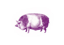 Load image into Gallery viewer, Pig farm animal screenprinting siebdruck woodcarving handdruck