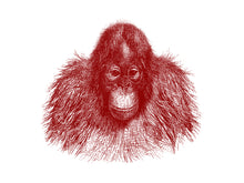 Load image into Gallery viewer, Baby Orang-Utan Print