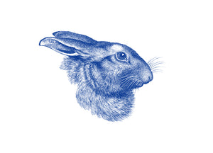 Rabbit portrait Print