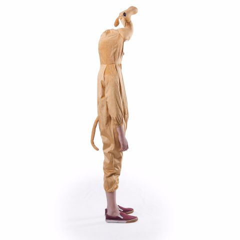 Camel Costume For Kids