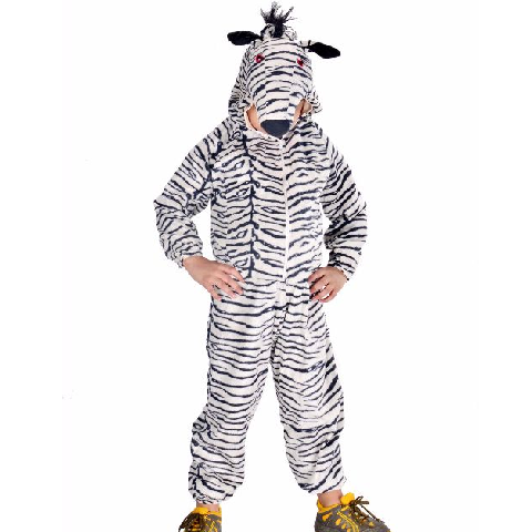Zebra Costume For Kids