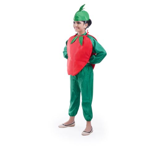 Apple Fruit Costume for fancydress shows