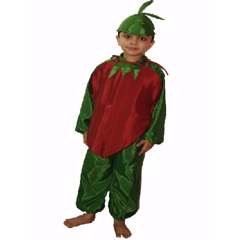 Beetroot Vegetable costume for kids