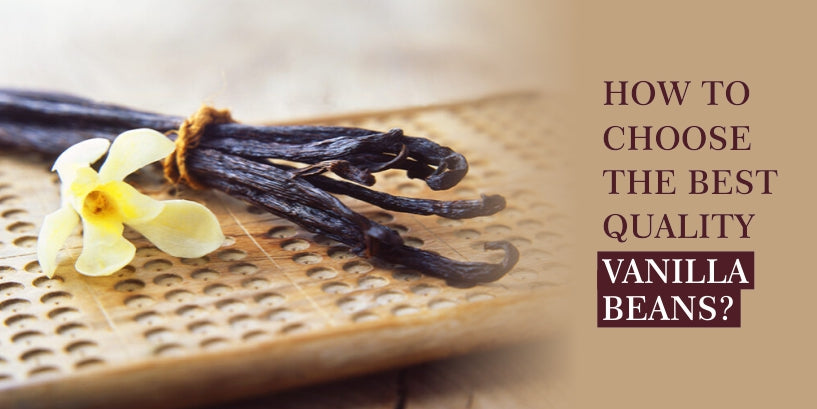How to choose the best quality vanilla beans?