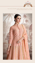 Load image into Gallery viewer, Pink Sajawat Mekari Indian Gown - DN1002