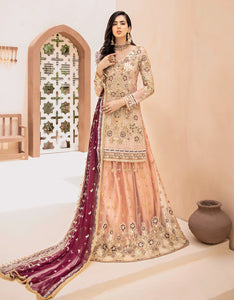 Emaan Adeel Bridal Collection 2020 Volume 3-CANDLELIGHT SHADES D-301