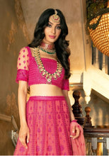 Load image into Gallery viewer, Sobia Nazir NAYAAB 2019 Wedding-Pink Lehenga