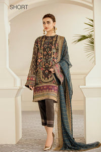 PECAN - Baroque Chantelle Chiffon Pakistani Suit