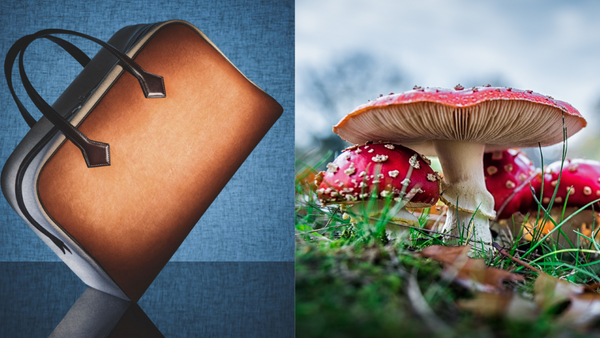 Hermès' new mushroom-based 'leather' bag, and exactly how sustainable is it?