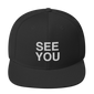 sarcastic quotes, sarcasm quotes, snapback hats, see you later