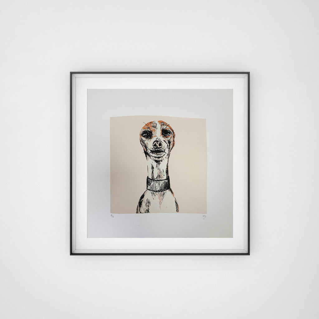 Iggy, Italiian Greyhound Art, Screen Print, Hannah Carvell