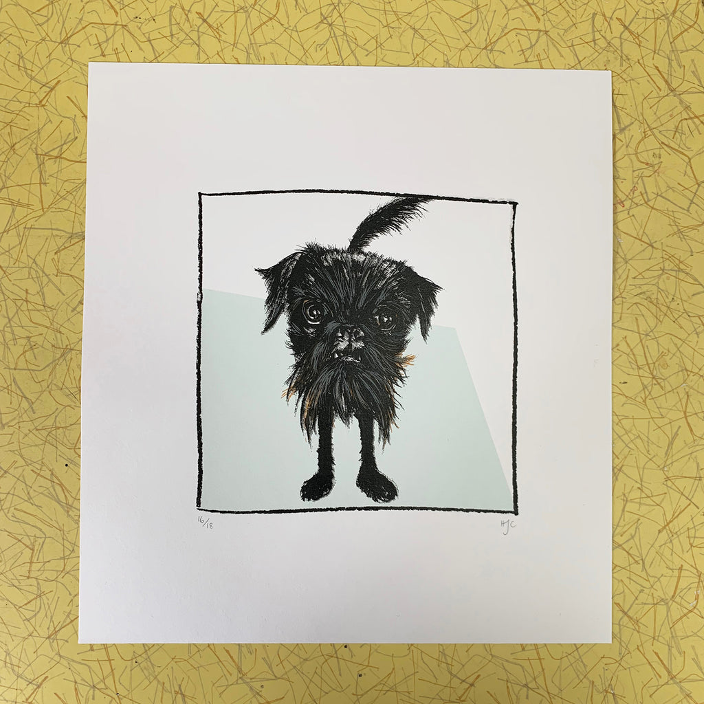 griffon dog, screen print, hannah carvell