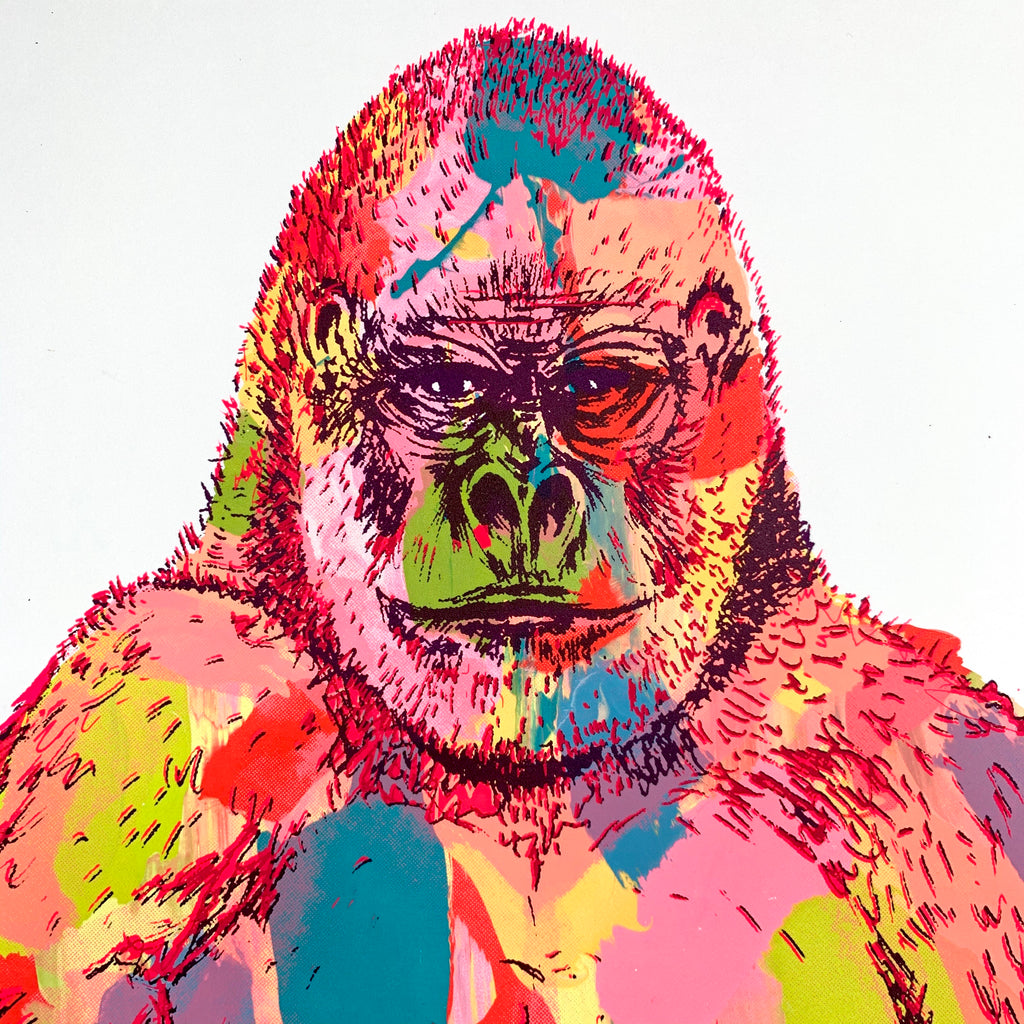 Original Rainbow Gorilla Screen Print 1/1