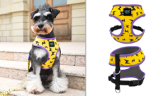dog harness yellow