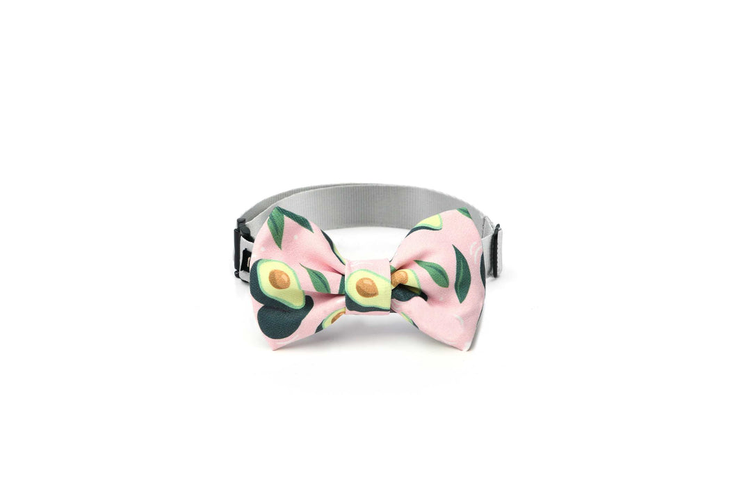 Avocado pattern- dog bow tie pink