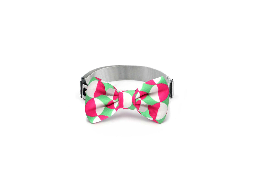 Multicolor printing pattern dog bow tie