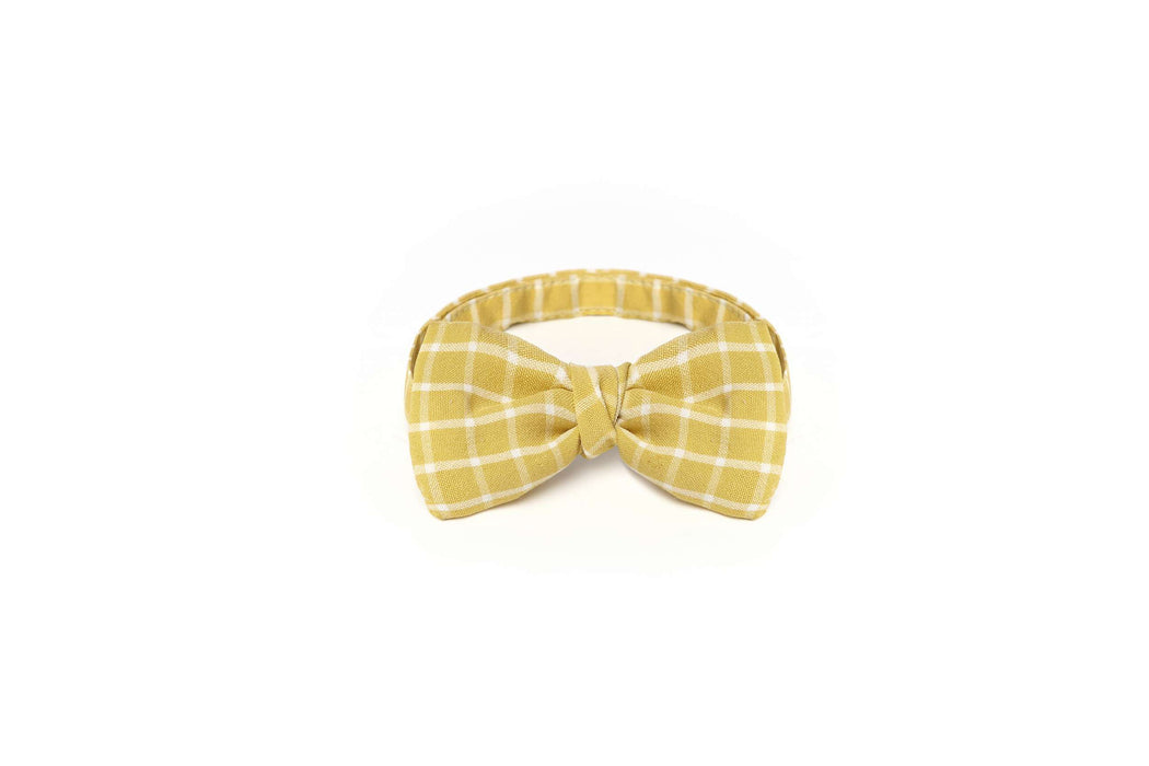 yellow dog bow tie