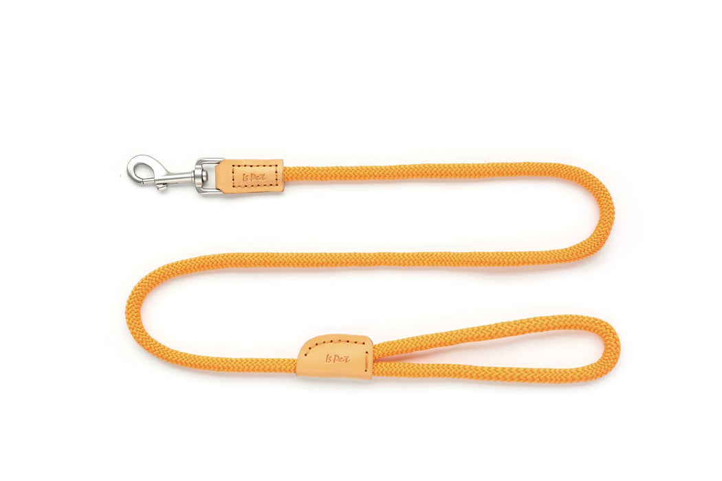 orange cat leash